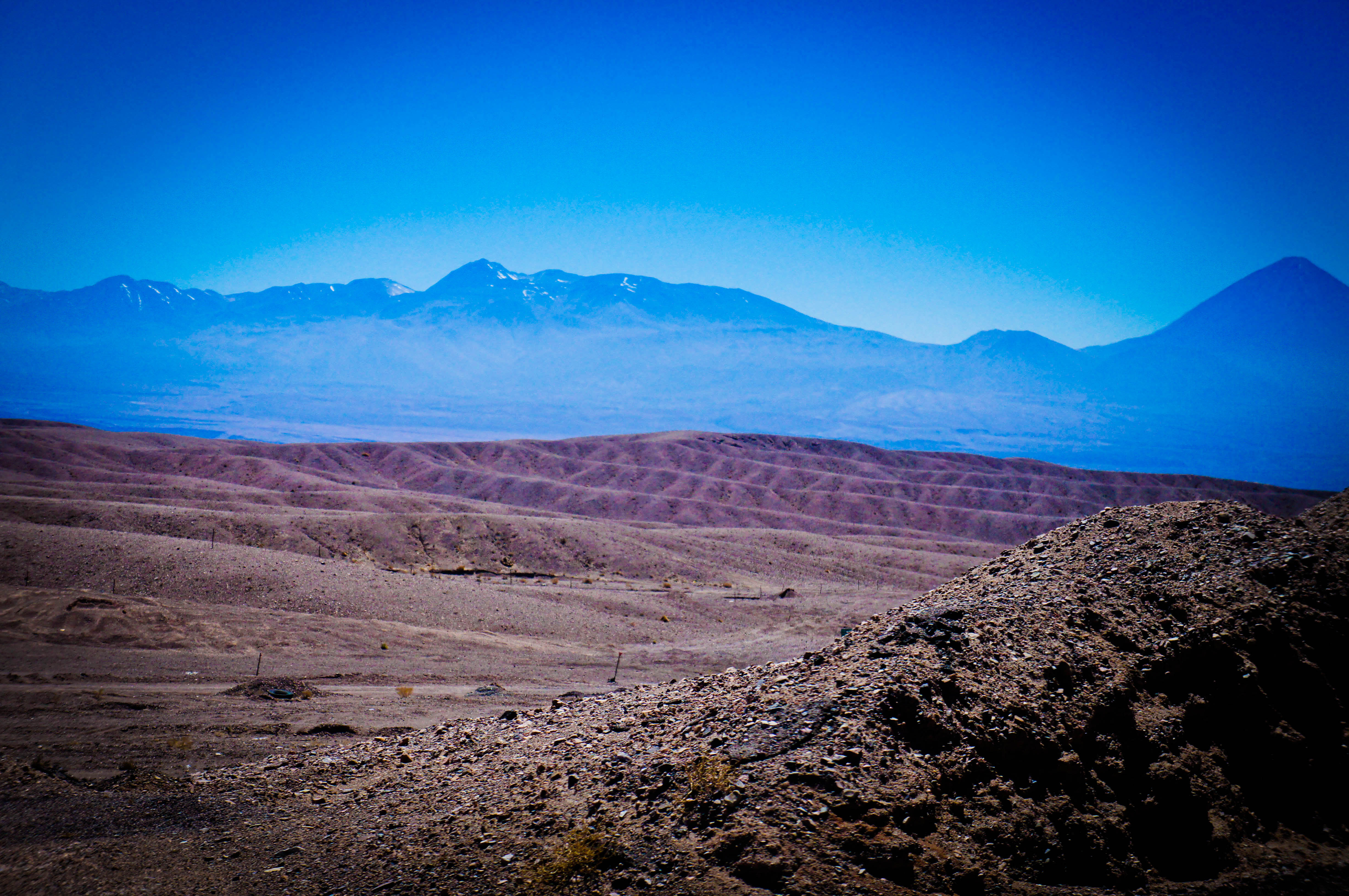 the atacama desert essay Chile chile is one of the most diverse countries on the planet because it stretches 6500 miles down the pacific.