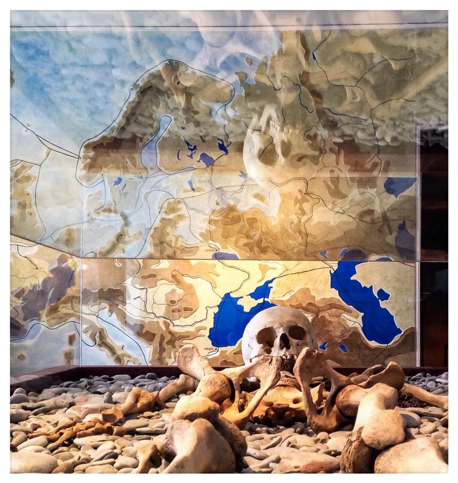 Bones from Viking times