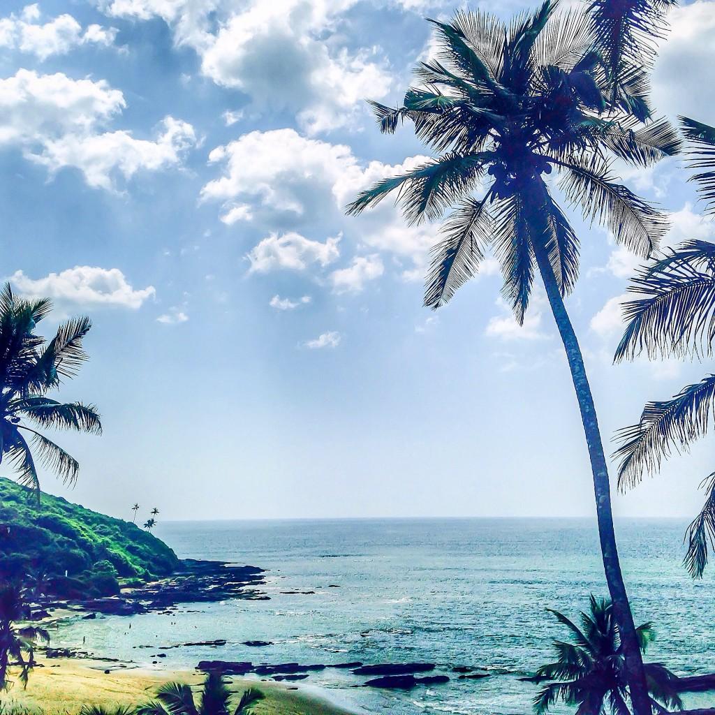 Gorgeous Goa in the sun.