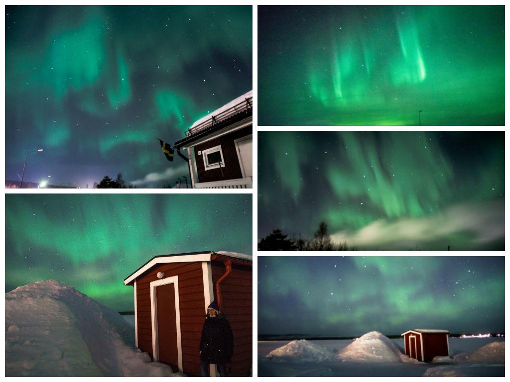 Green Arctic Circle