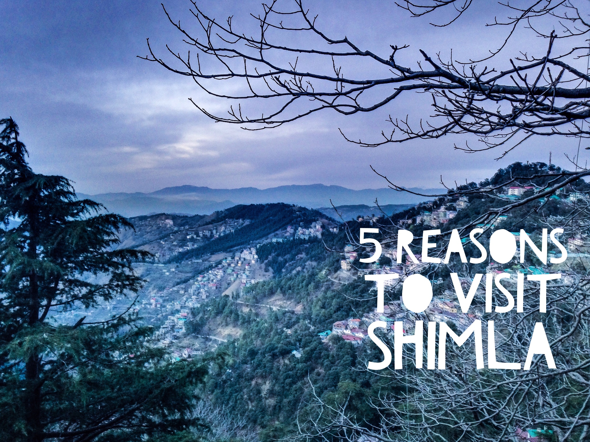 essay on a trip to shimla Essay on himachal pradesh print  are of great significance to himachal pradesh shimla,  for shopping trip in which customers need to move throughout.