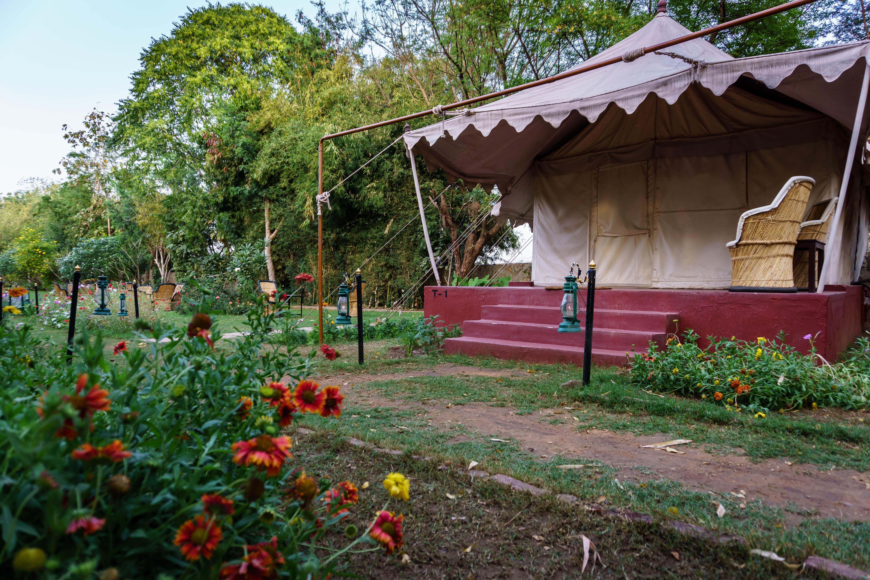Luxury Tent at Jungle View Resort, Ranthambhore