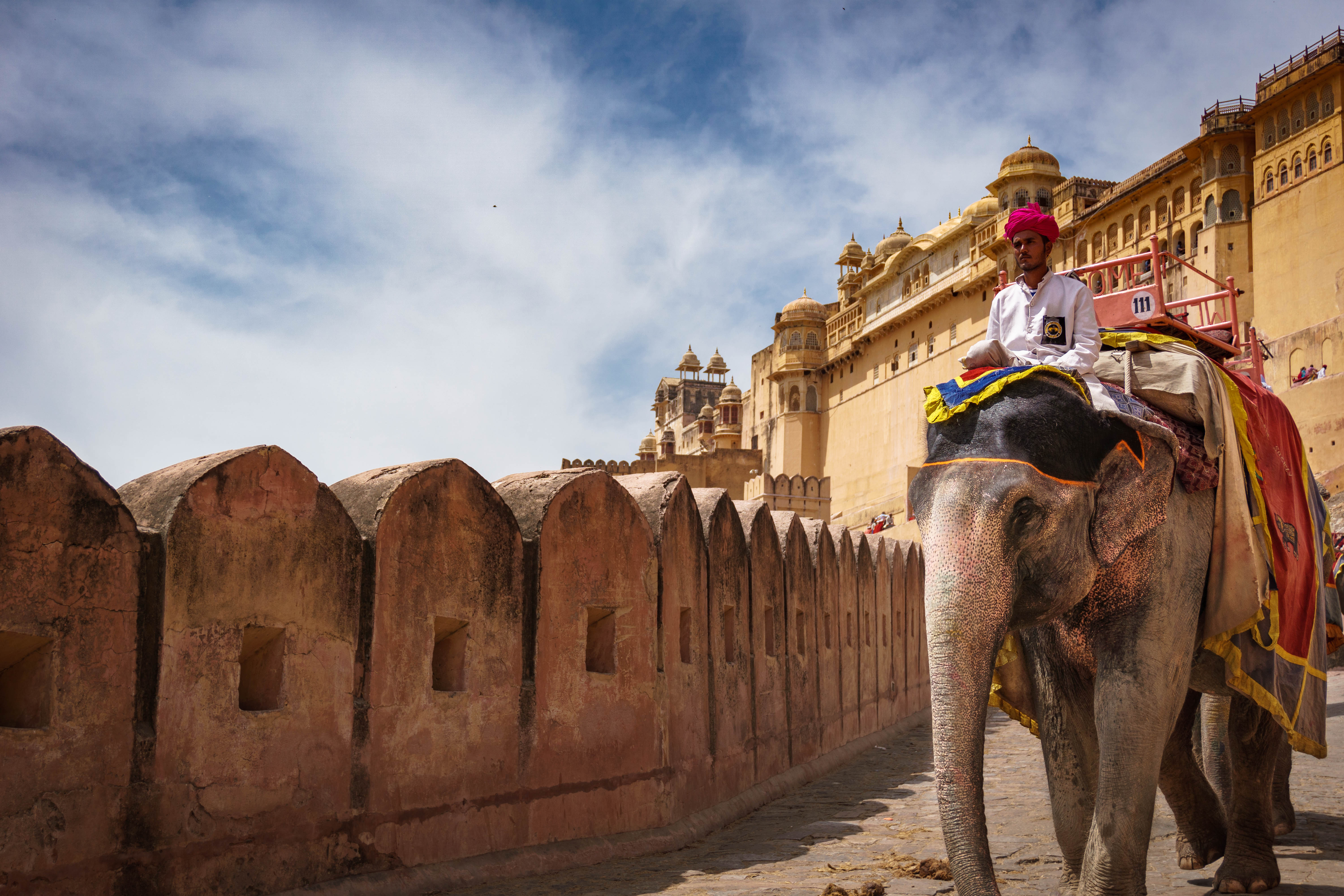 Elephant and Mahout, Amber Fort, Jaipur