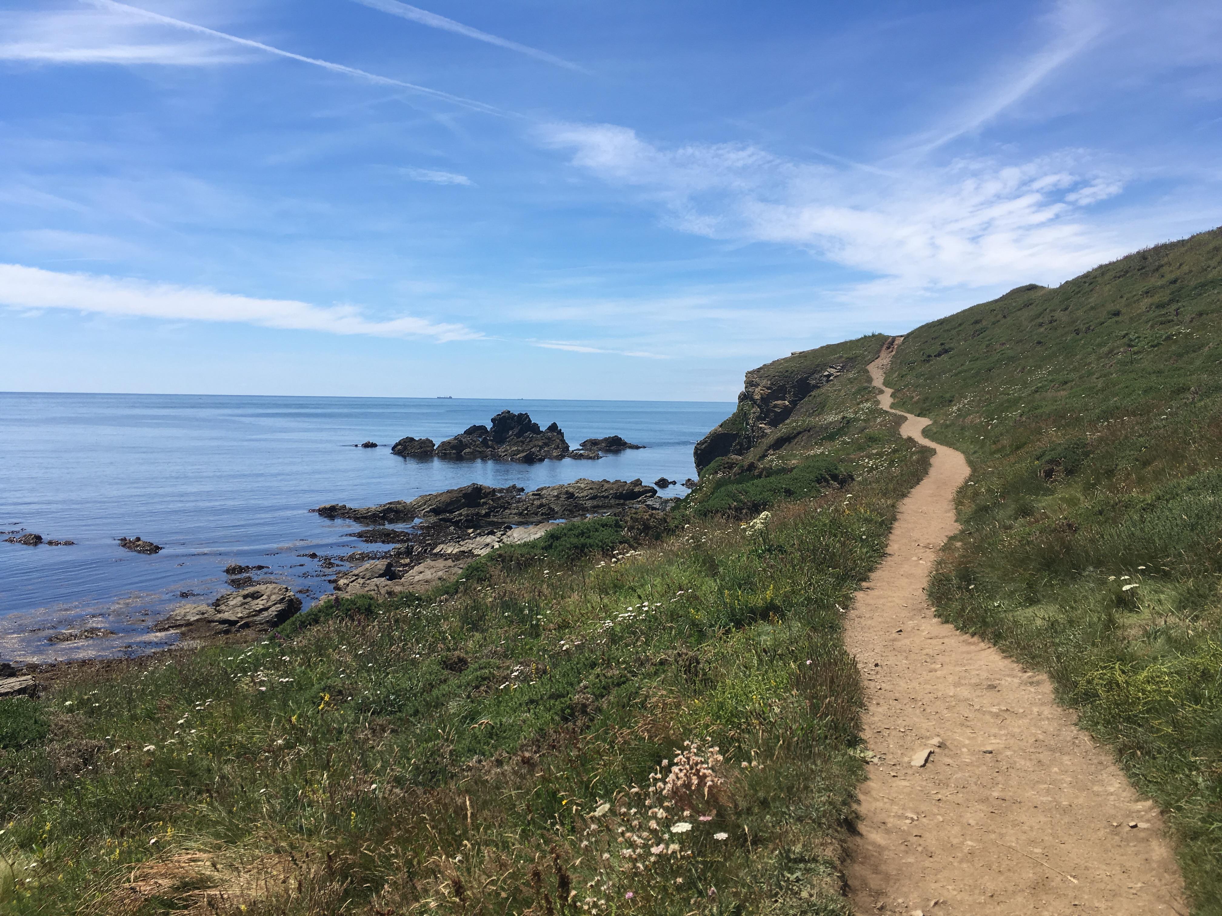 Coastal footpath, Lizard