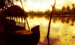The Sound of Silence in Kerala's Backwaters