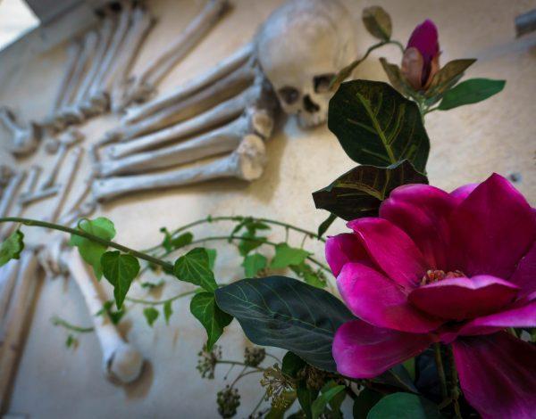 A Macabre Mass of Bones and Skulls at Sedlec Ossuary, Prague