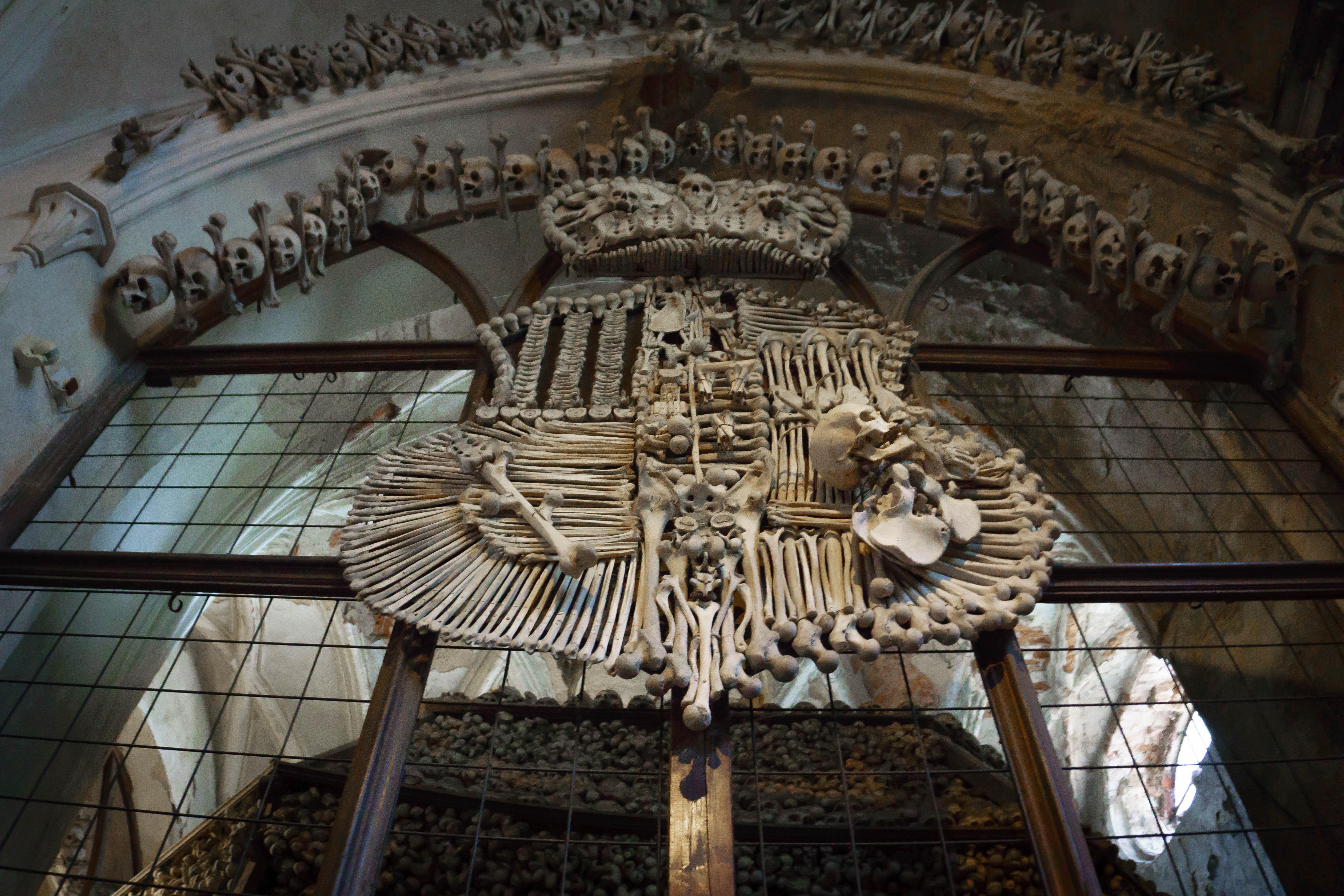 Schwarzenberg Coat of Arms