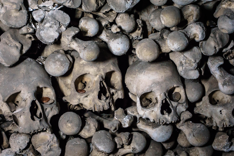 Skulls at Sedlec Ossuary