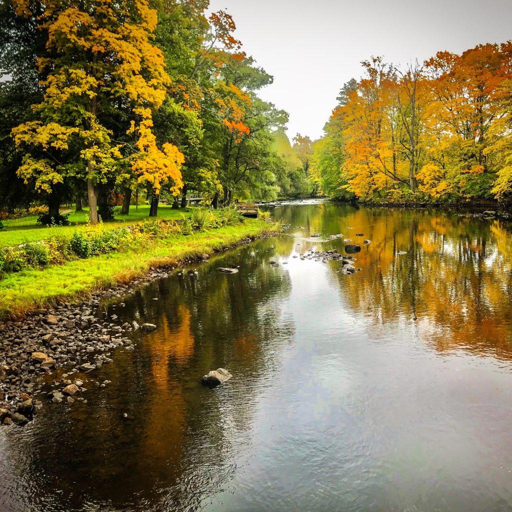 European Autumn